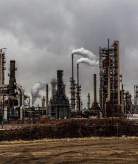 Neutralização de Carbono: descubra como tornar sua empresa mais sustentável
