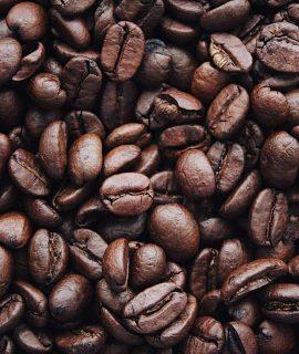 Produção de Café: conheça o processo por trás da xícara!